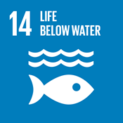 SDG Icon for Life below water